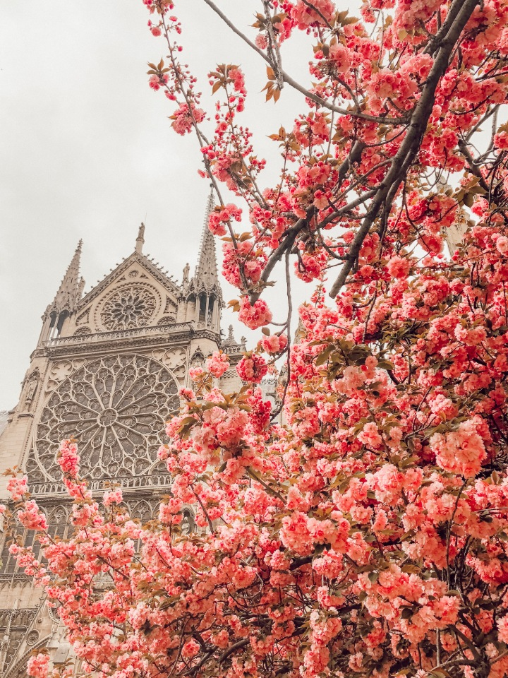 PRETTIEST PARIS PHOTOGRAPHY SPOTS